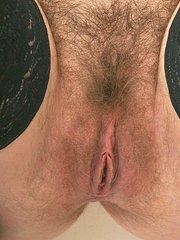 primer plano de un cono peludo